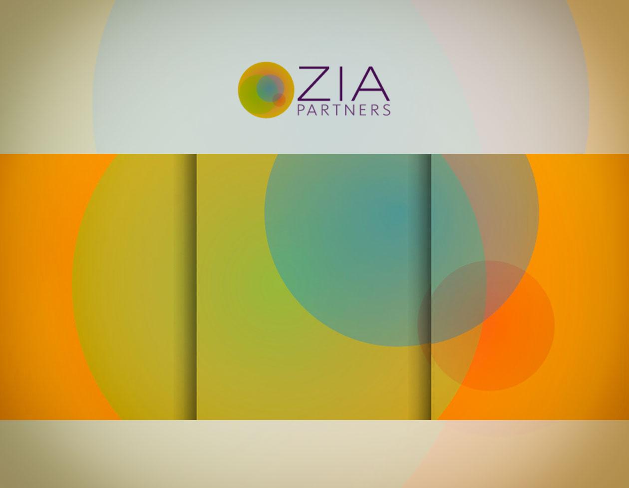 Portfolio-ZIA-Partners.jpg