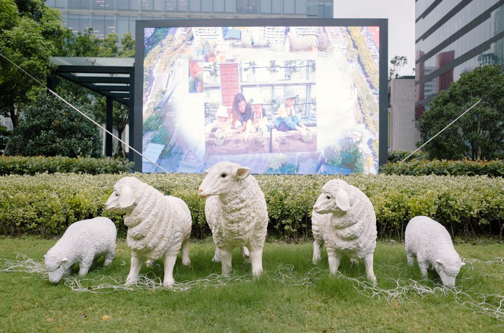 上海かわいいシリーズ:ひつじたち