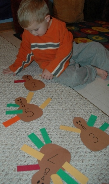 Turkey Feather Counting