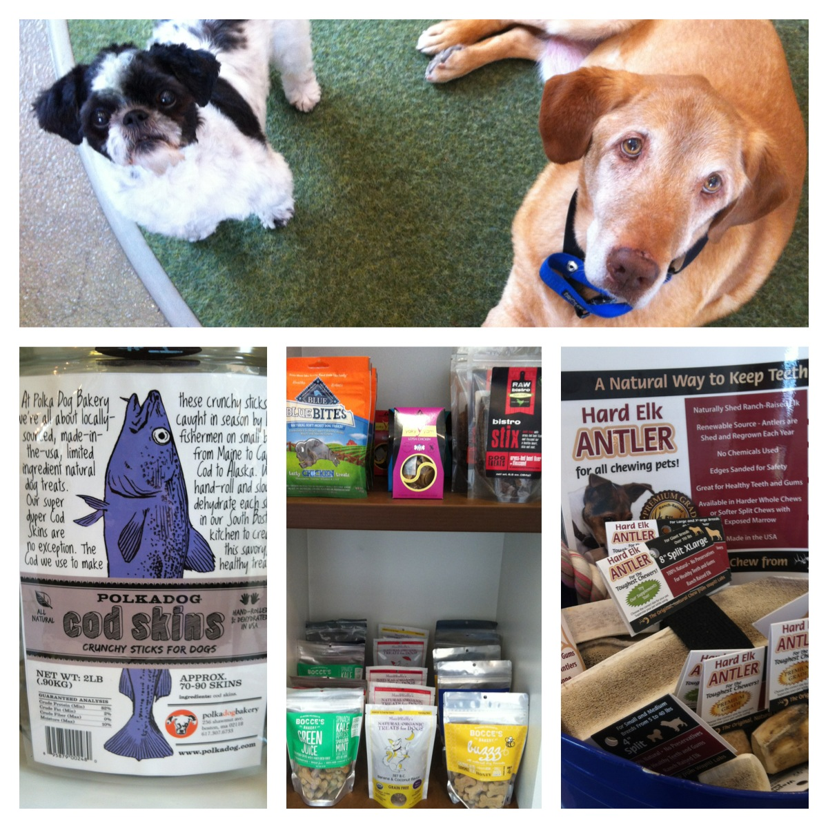 Keenser and Frank are happy to know that our treats are safe (and delicious)!
