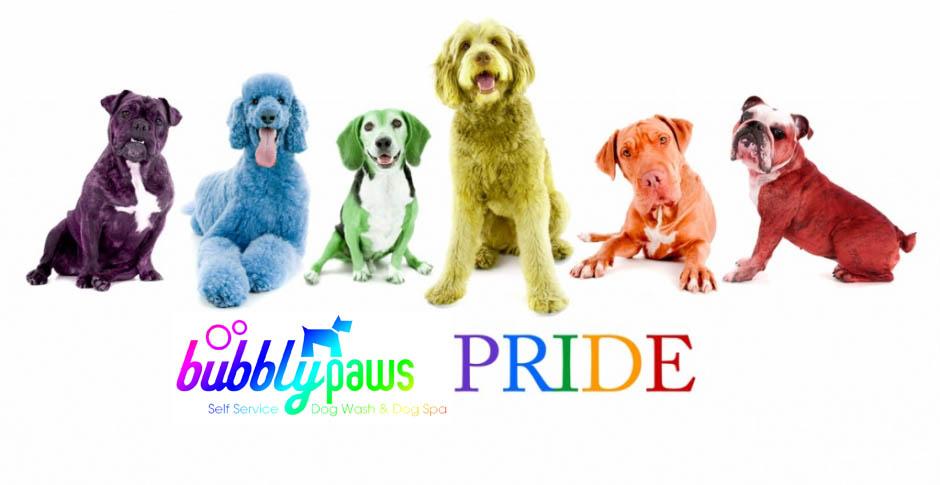 bp-pride