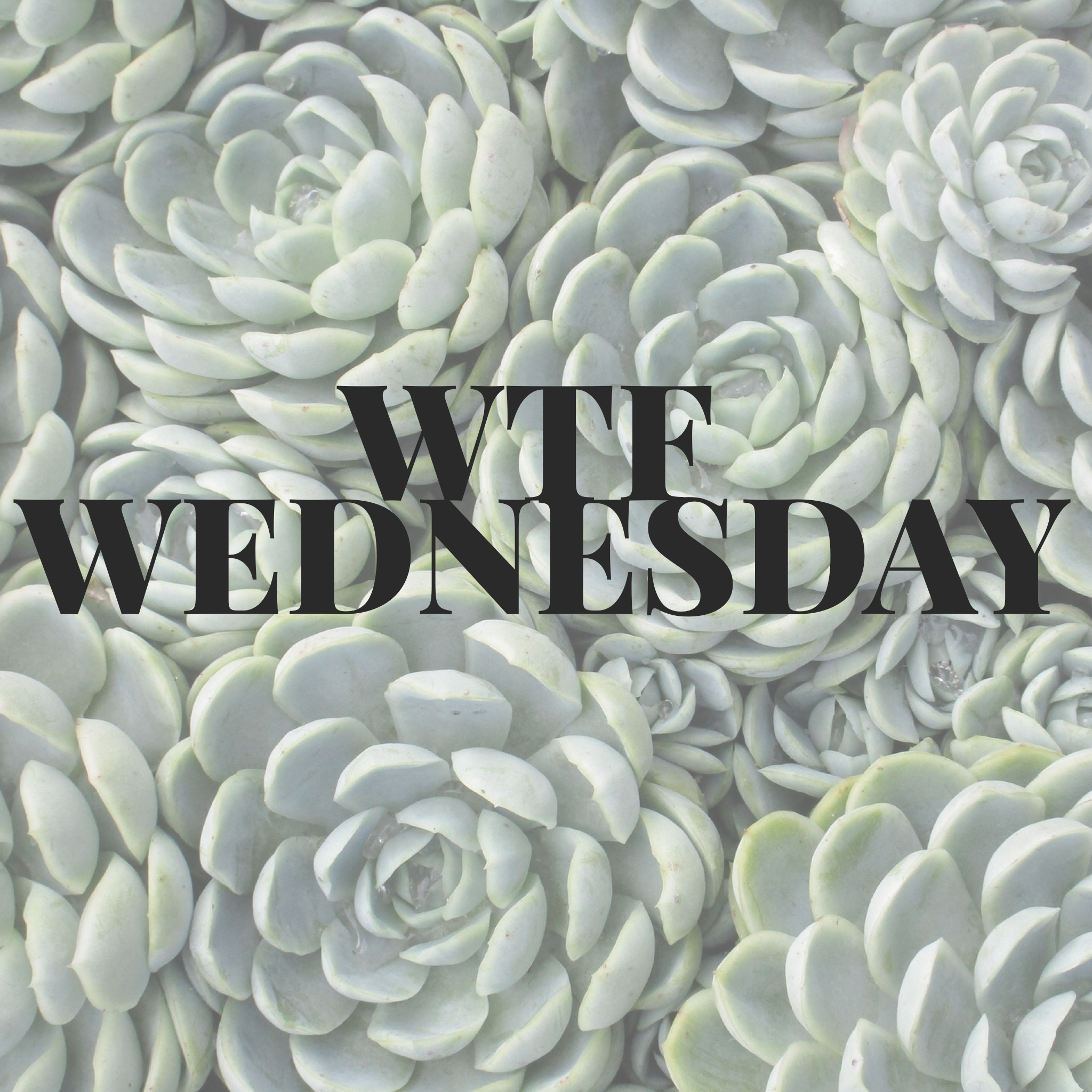 It's another week of WTF! - (Aren't they all?) Are you doing an exercise where you sit or stand in the well of the reformer? What's the name of that one? I'll wait…