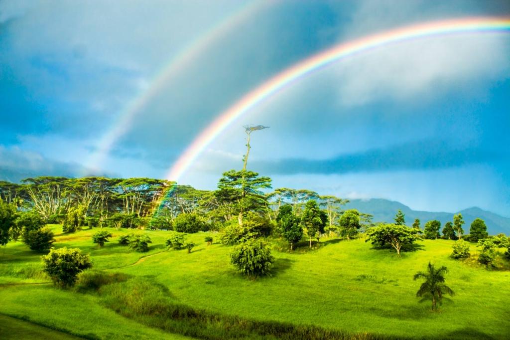 Double rainbow over Naikela Botanicals farm