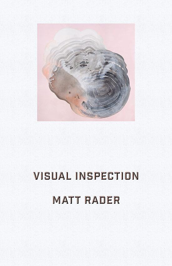 Visual Inspection  via ZG Communications.