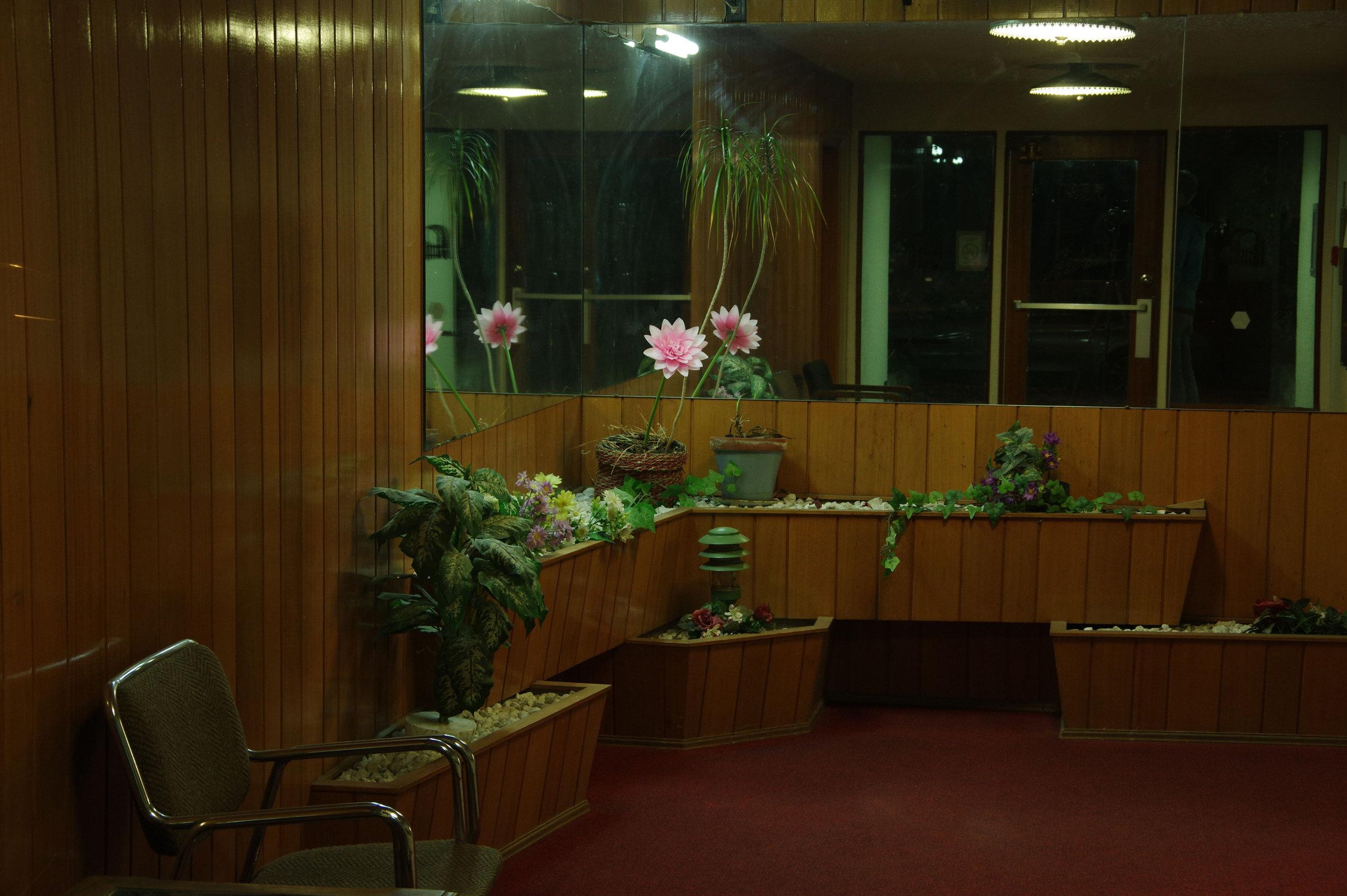 Lobby Flower, 2018. Digital long exposure.