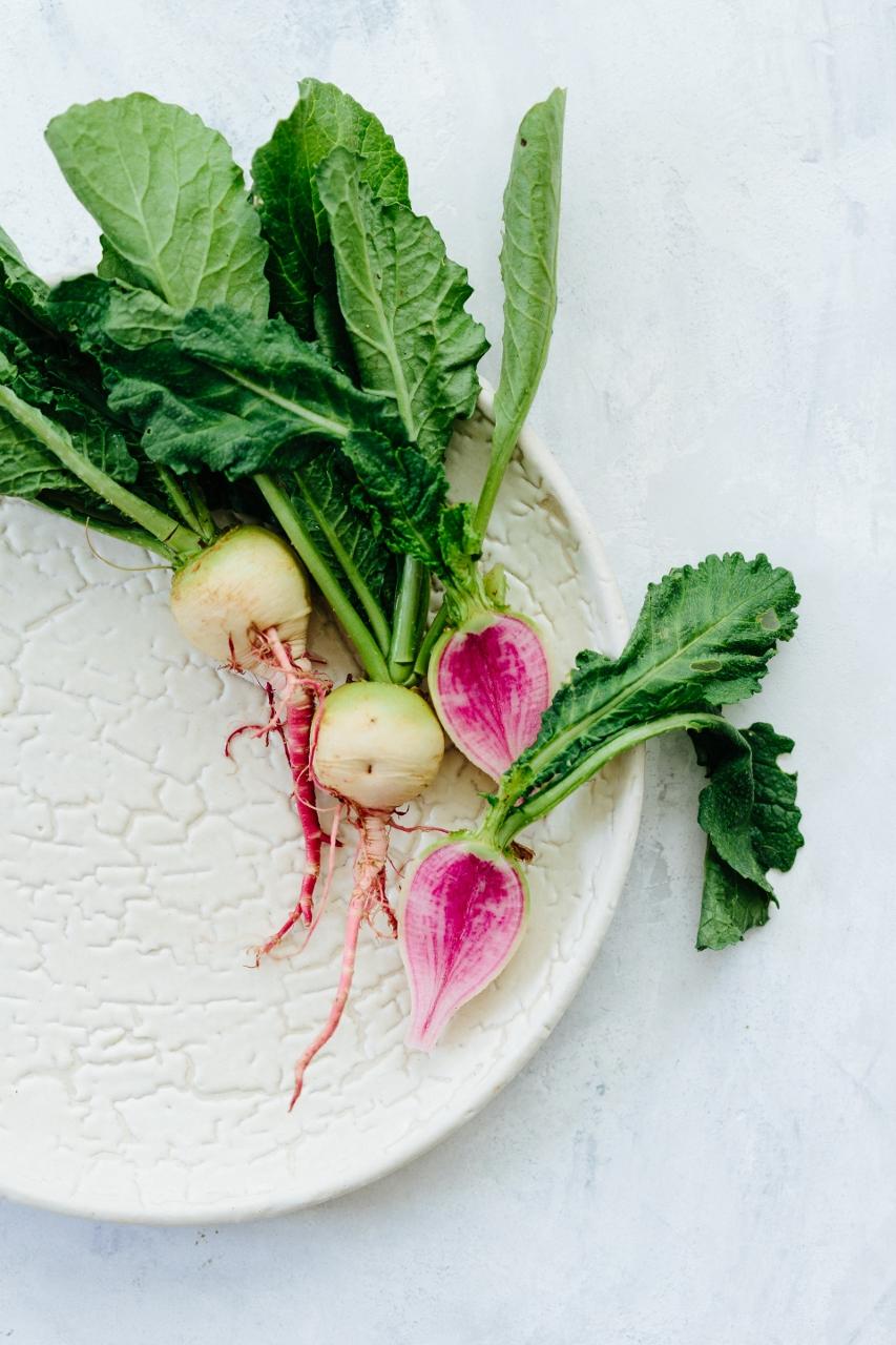 Watermelon radish carpaccio and arugula salad Vy Tran (1 of 11) (853x1280).jpg
