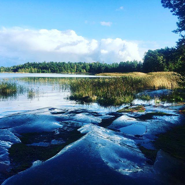 Sightseeing in Espoo! #natureeverywhere #naturelovers #forthesakeofbeings #coastoffinland #goodvibes