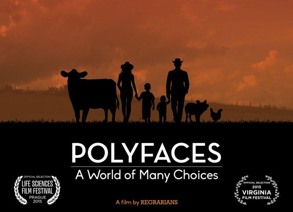 polyfaces.jpg