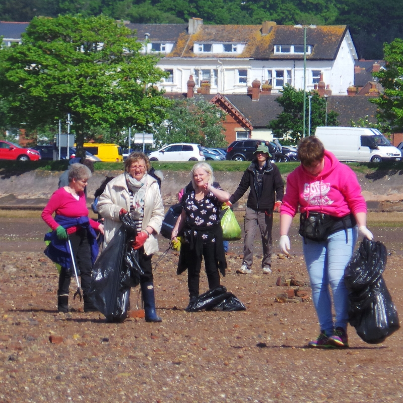 Many hands make light work when it comes to cleaning up the estuary