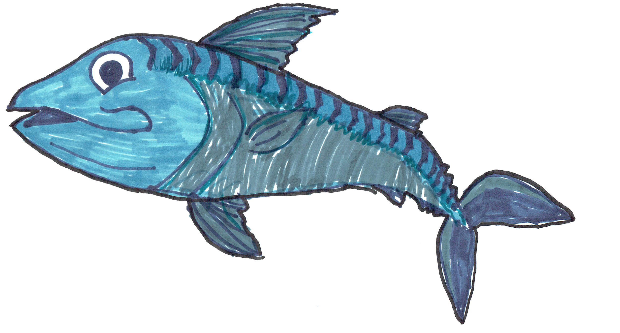 Mickey Mackerel drawn by Dillon Price (above) and Lacie Lace Fish drawn by Lacie Skinner (below) are two winning fish from our Kids Colouring Competition and have both featured on our Krispies Collectors Cards and our Menu.