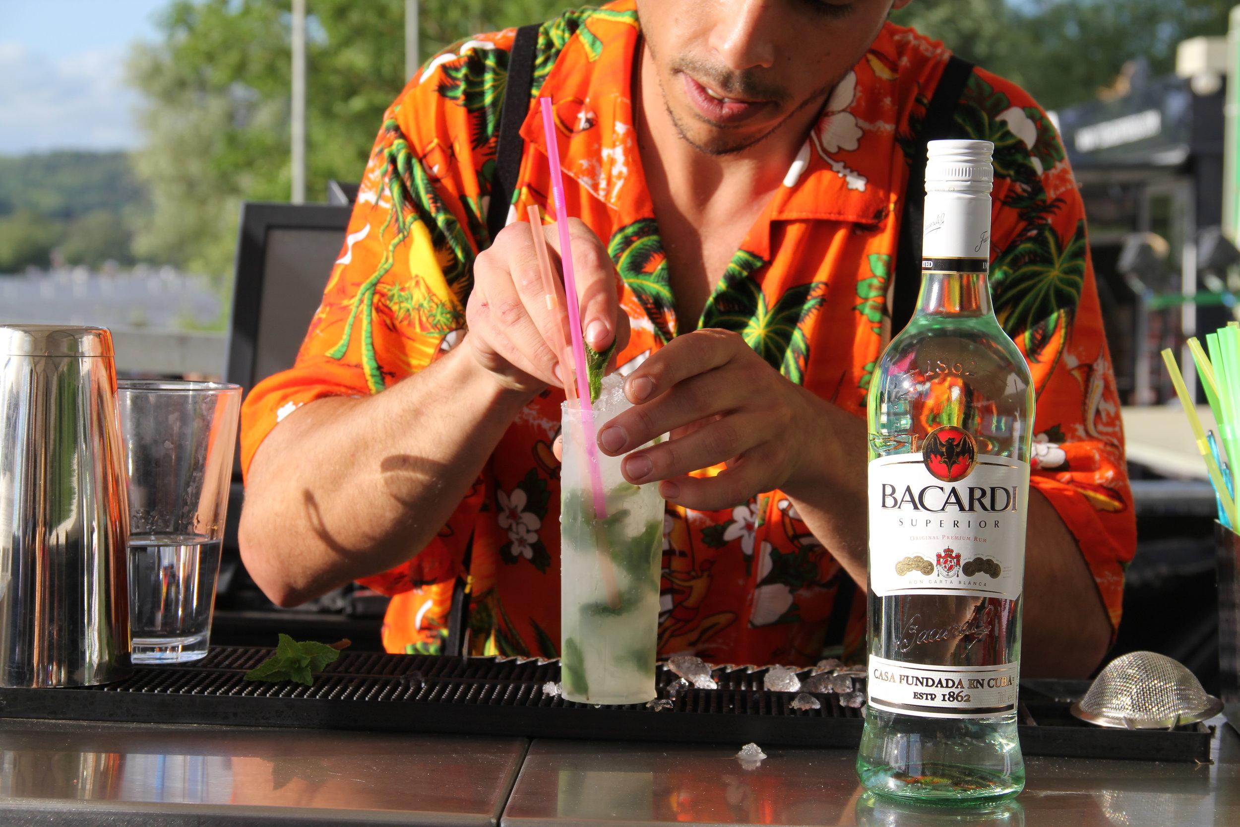 Cocktail Bartender.JPG