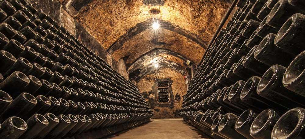 bottles-champange-cellar.jpg
