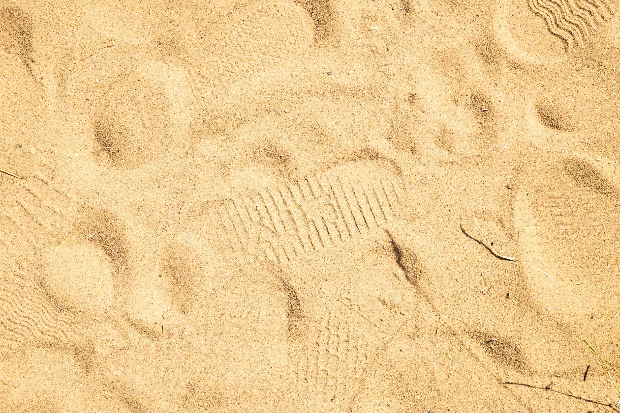 seaside (34 of 40).jpg