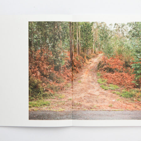 We-Make-the-Path-by-Walking-Book-spreads-2_860-450x450.jpg