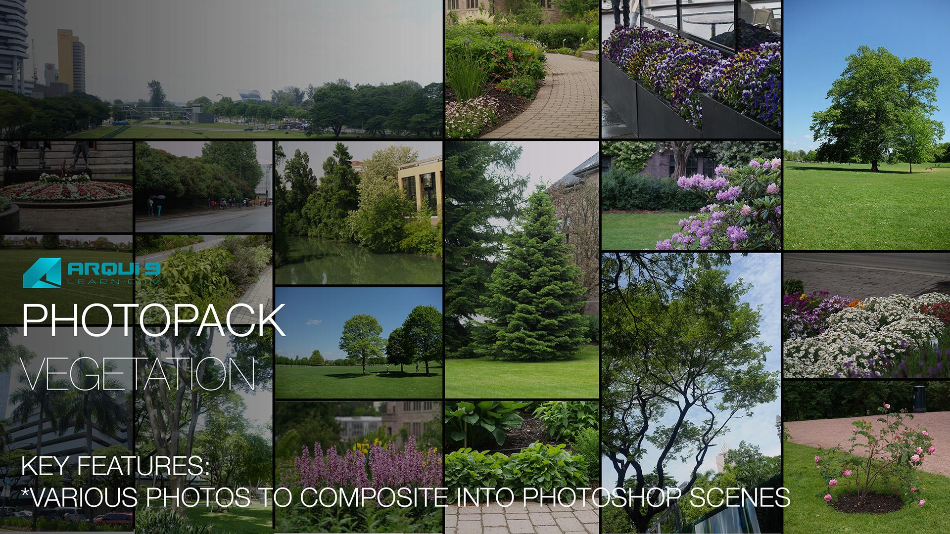 Photopack-Vegetationt_Template.jpg