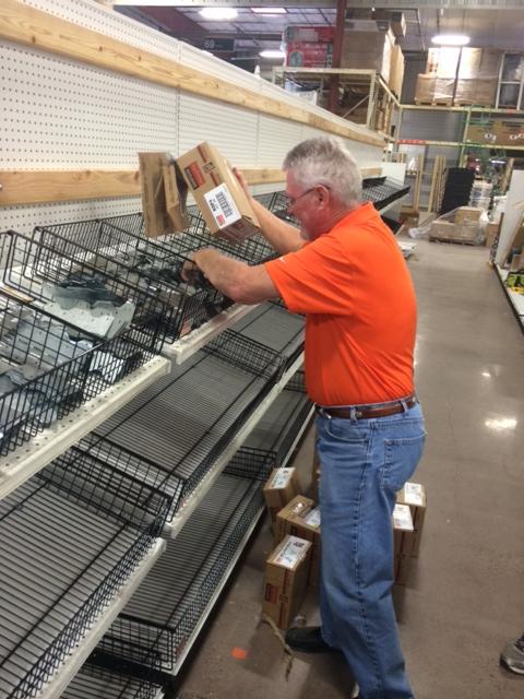 2 HomCo - Filling the Shelves.JPG