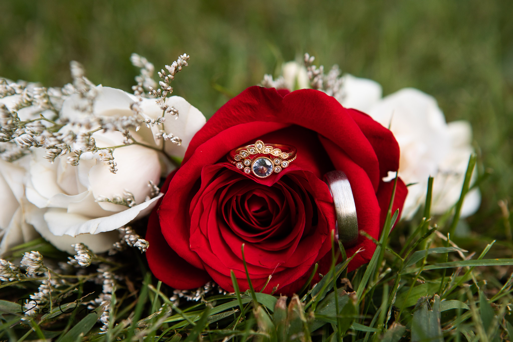 wedding rings in red and white flower bouquet.jpg