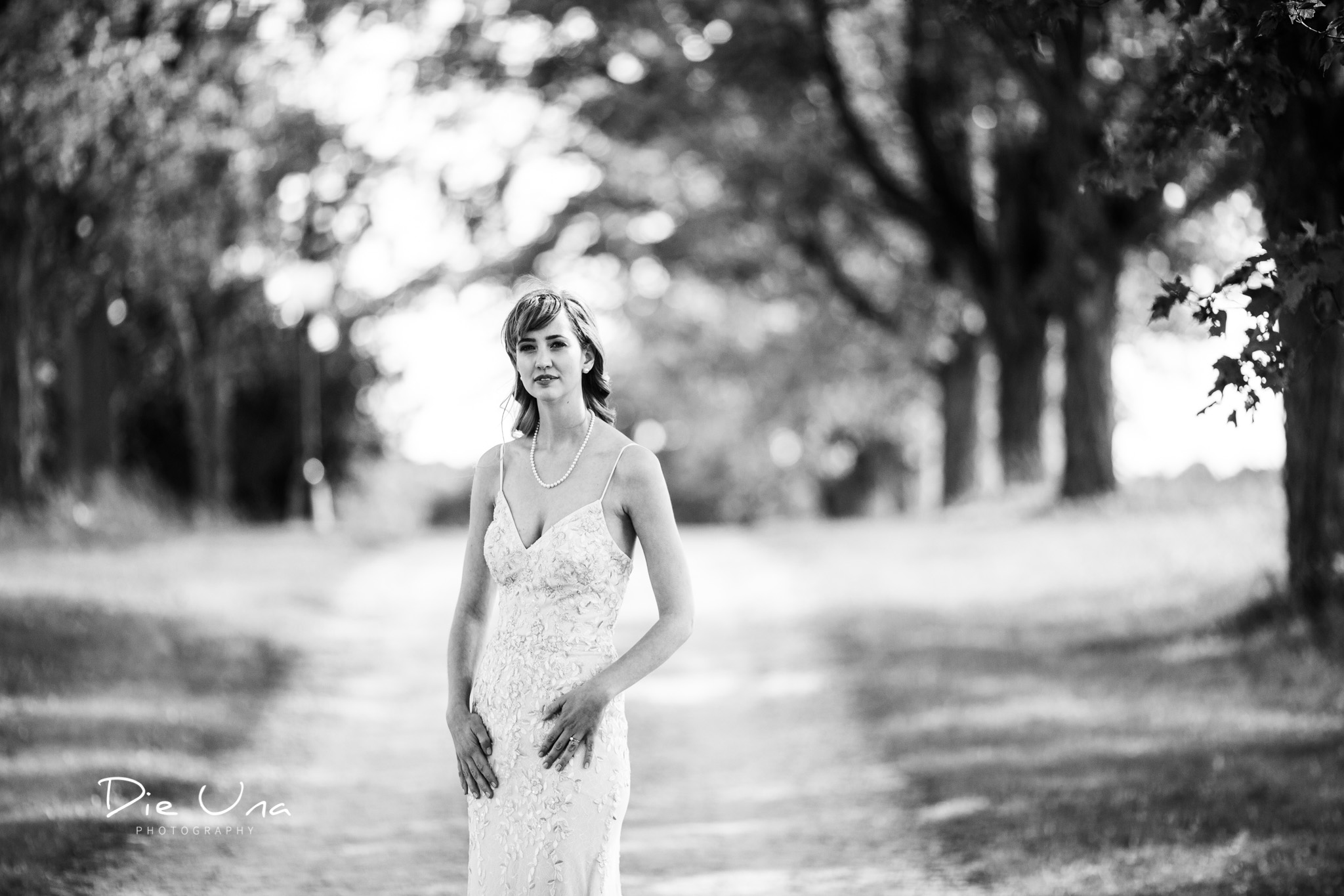 black and white portrat of bride on a tree lined driveway.jpg