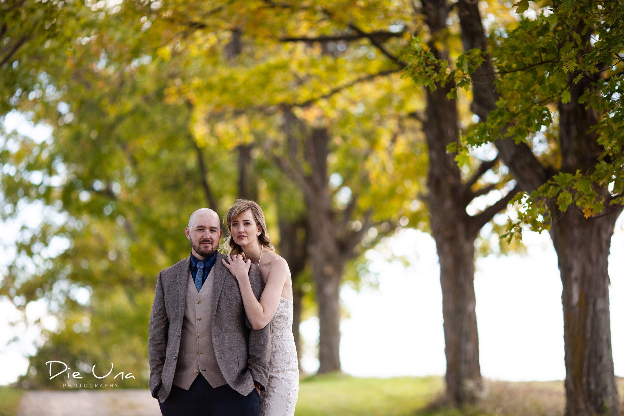 bride hugging groom from behind with yellow fall leaves in the background for wedding portrait.jpg