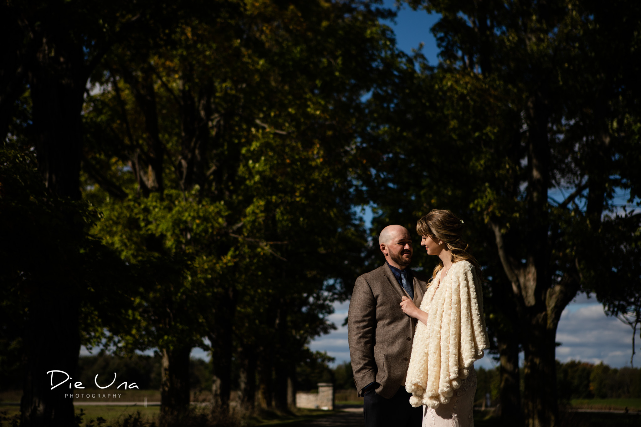 harsh light bride and groom wedding portraits with trees in the background.jpg