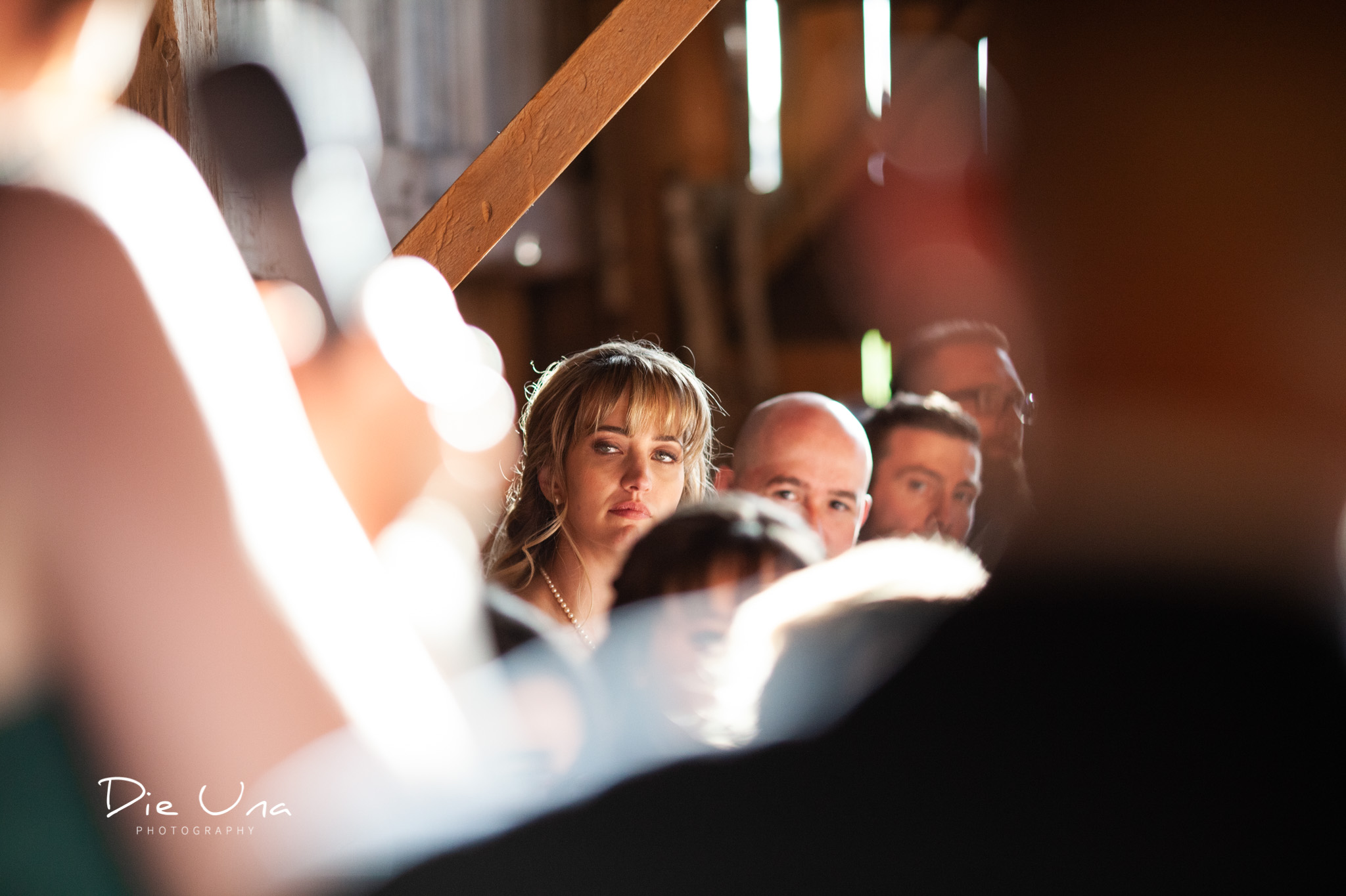 view of the bride from brides parents during wedding speech kitchener wedding photographer.jpg