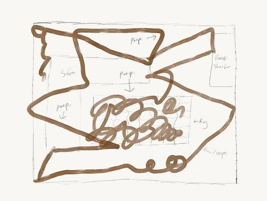 This is a diagram of what happens when a Roomba runs over dog poop.