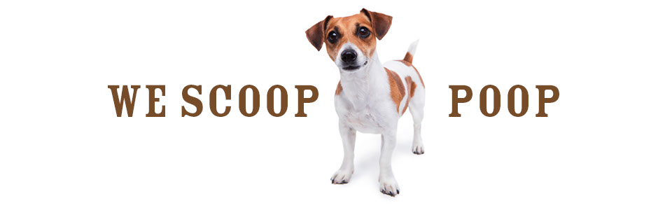 poop scooping; pet waste removal; dog poop removal; dog poop cleanup; dog waste removal; dog poop services; best pooper scooper; best poop scooper; dog poop pick up; pet waste removal services; pet waste removal service; dog poop in yard; what to do with dog poop; pooper scooper business