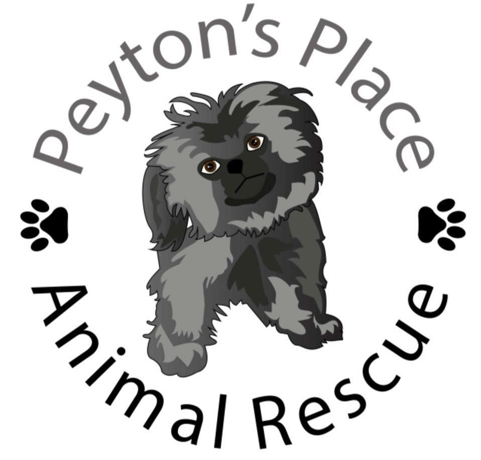 Peyton's Place Animal Rescue  is dedicated to rescuing small domesticated animals that come from a variety of situations, be it a kill shelter, partner rescue group or an individual that can no longer care for their pet. We are committed to ensure animals that come into our group are fully vetted and have clean bills of health before finding them the best possible home. We are a registered 501(c)(3) non profit. We do not take salaries. Every dollar goes to the animals.