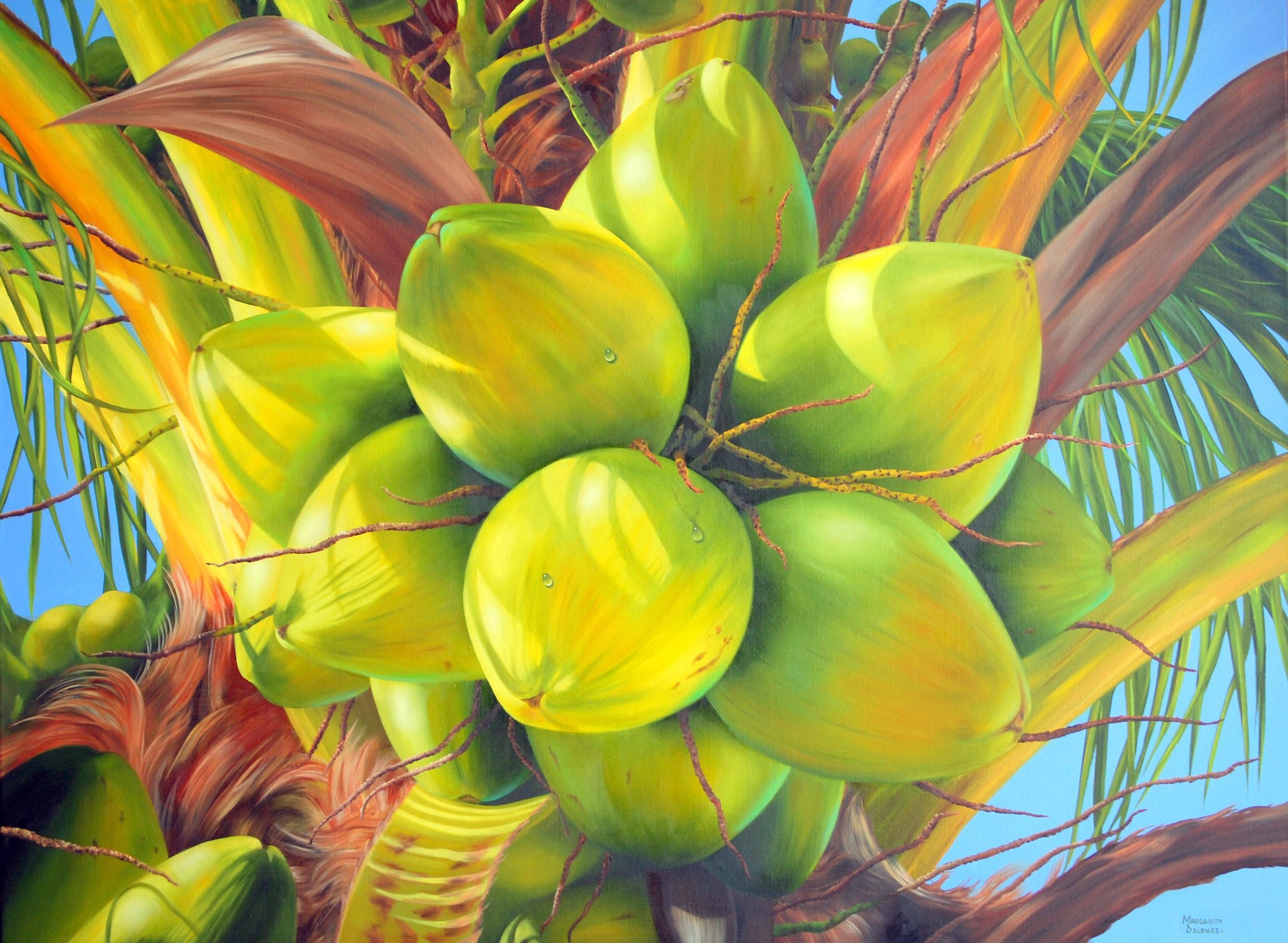 Caribbean Coconuts