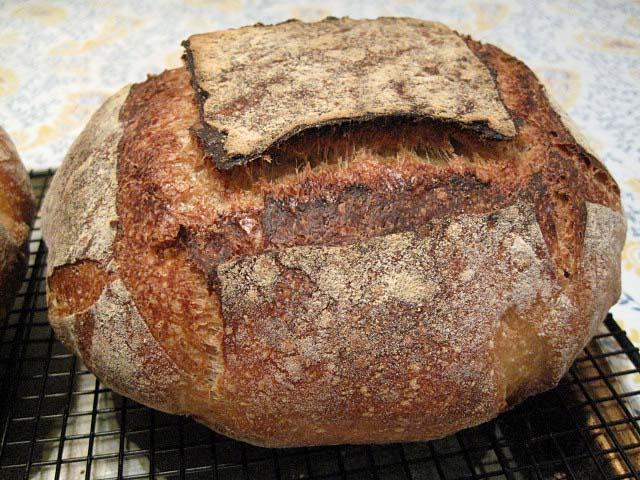 kernza bread - photo credit huff post