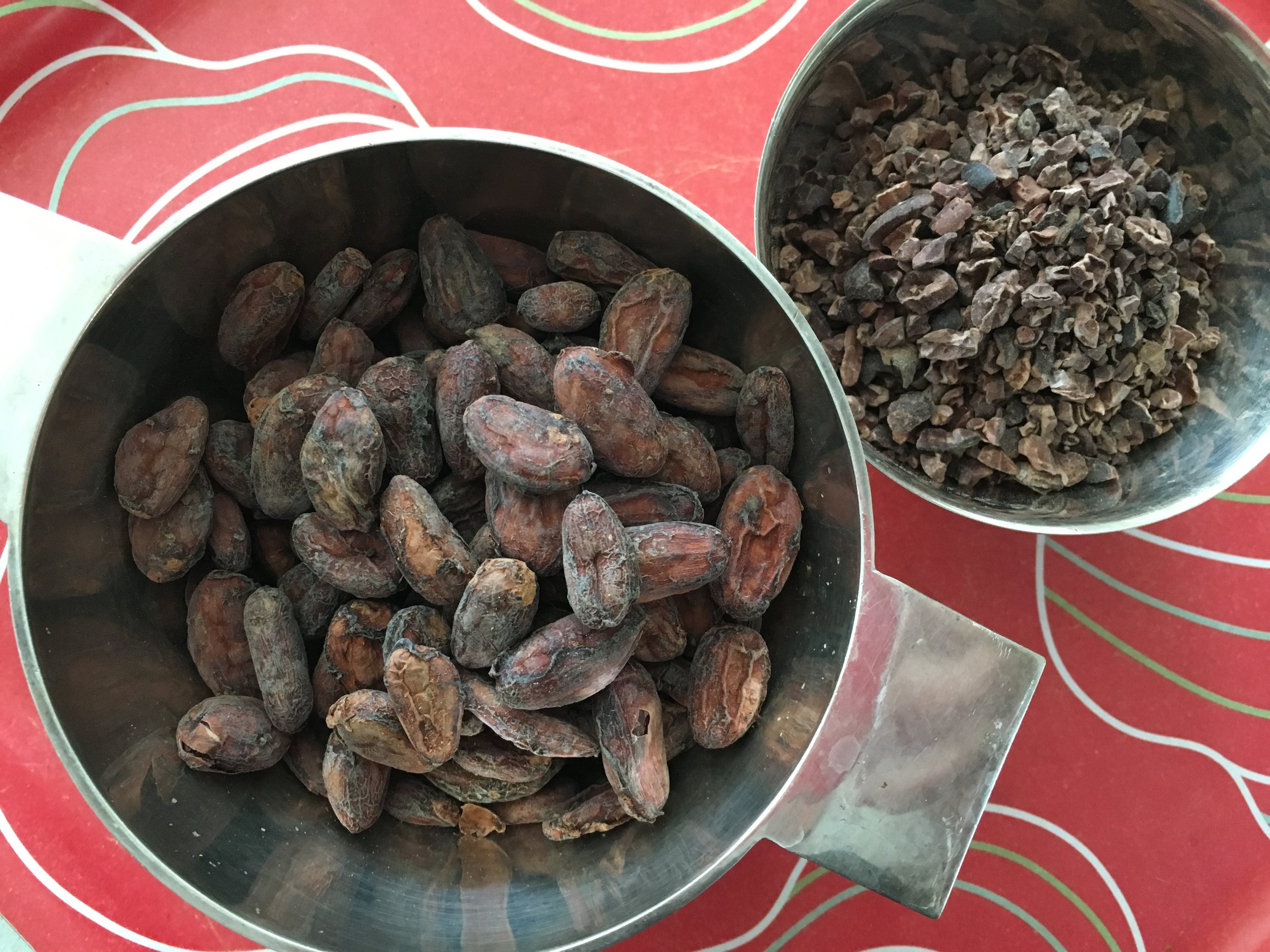 raw cacao beans and nibs