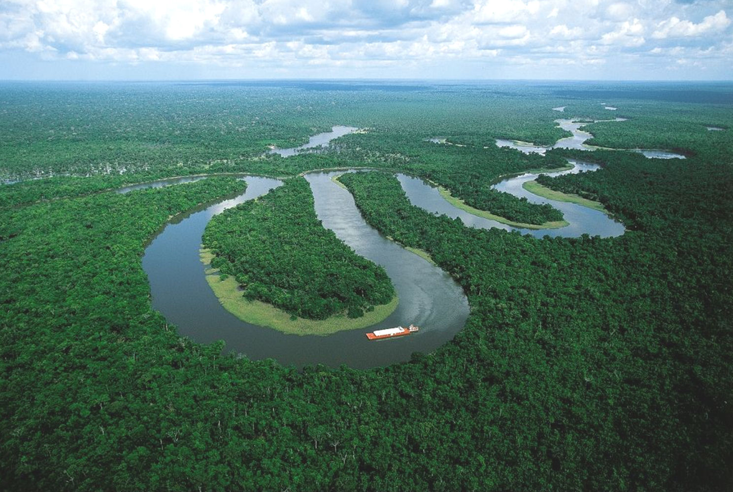 Amazon_river_more_oxbow_river_shape.jpg