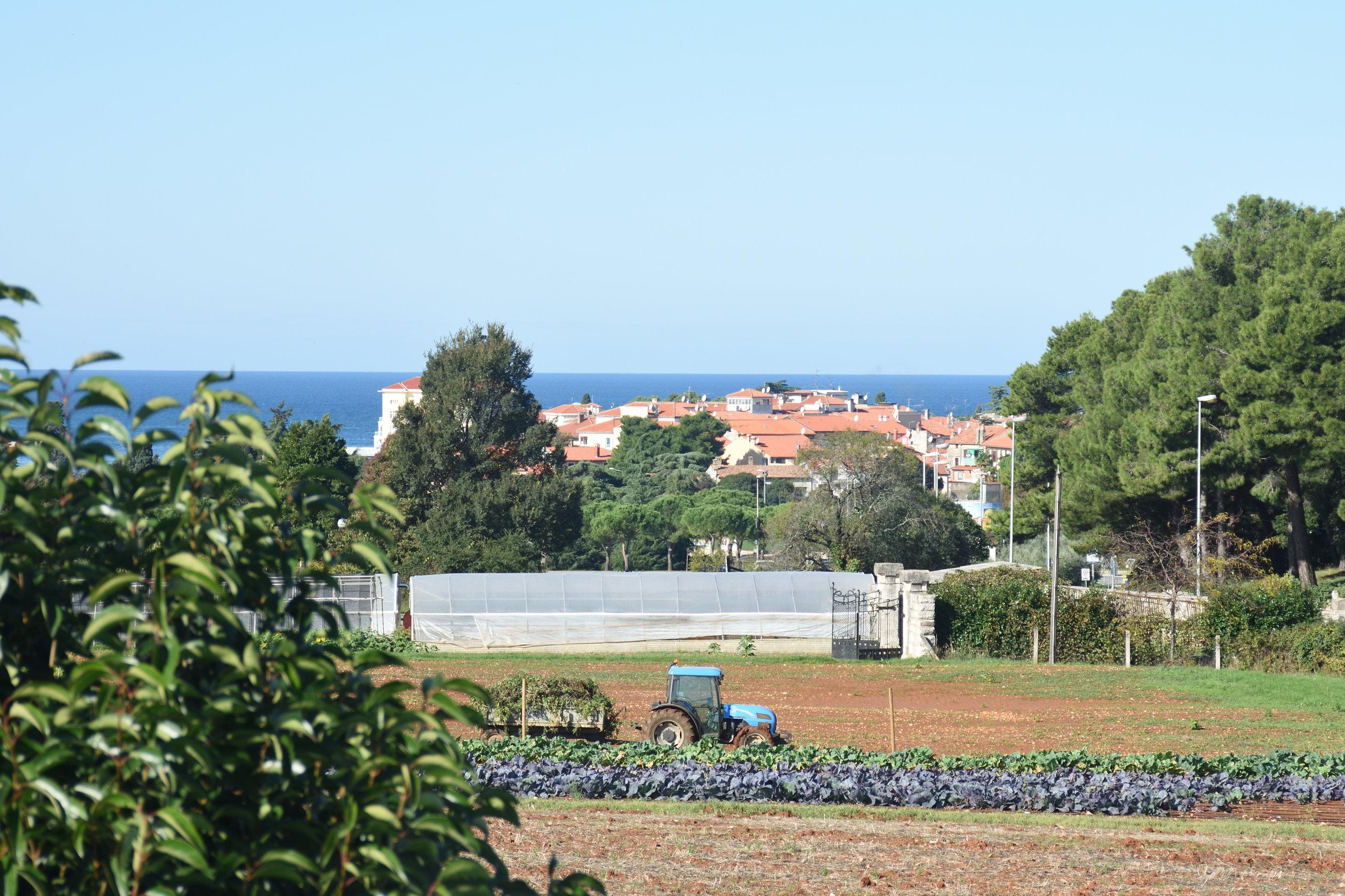 View from Villa Bruna, Porec, autumn 2016