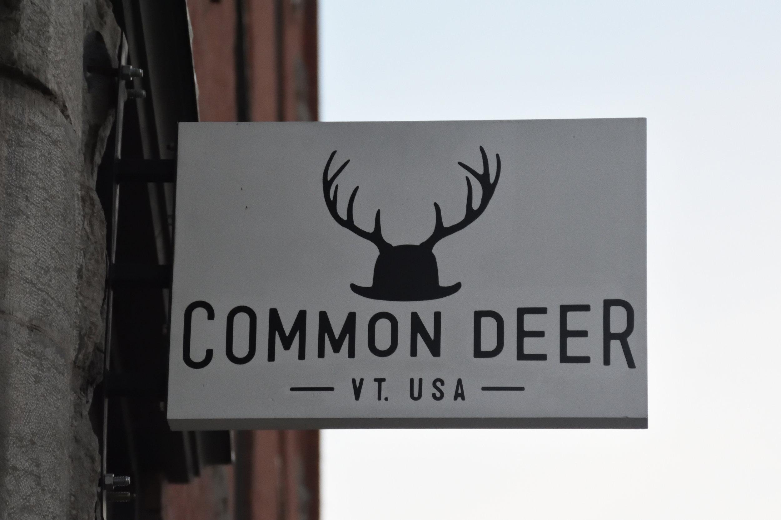 Common Deer, Burlington 2016