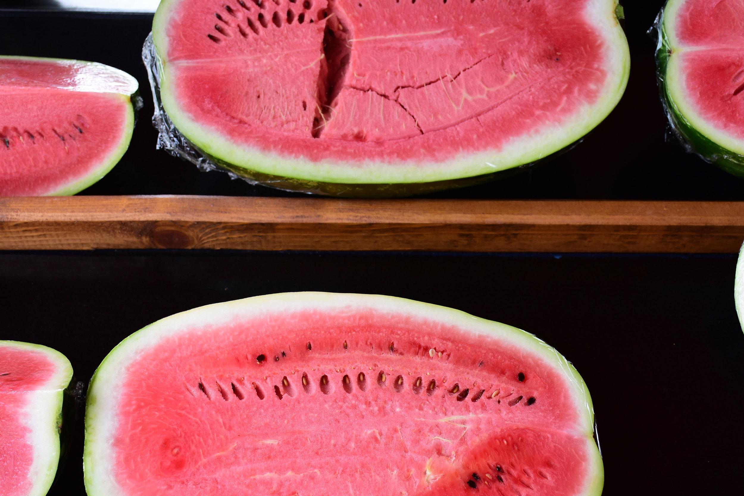 Watermelon direct from the garden, Porec 2016