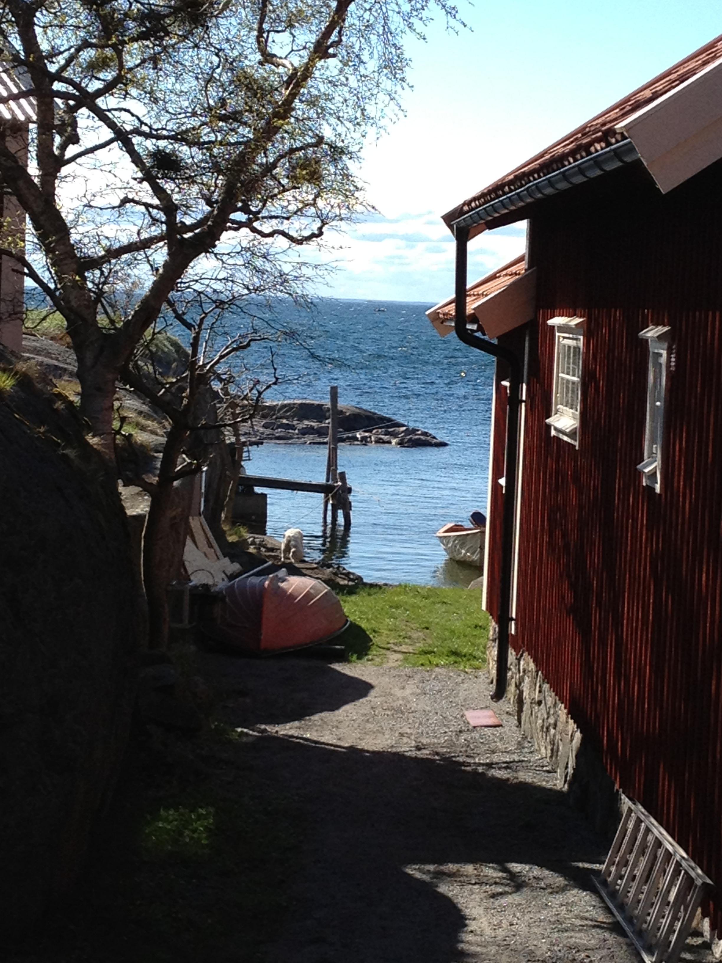 Landsort / Öja, Stockholm arkipelago 2012