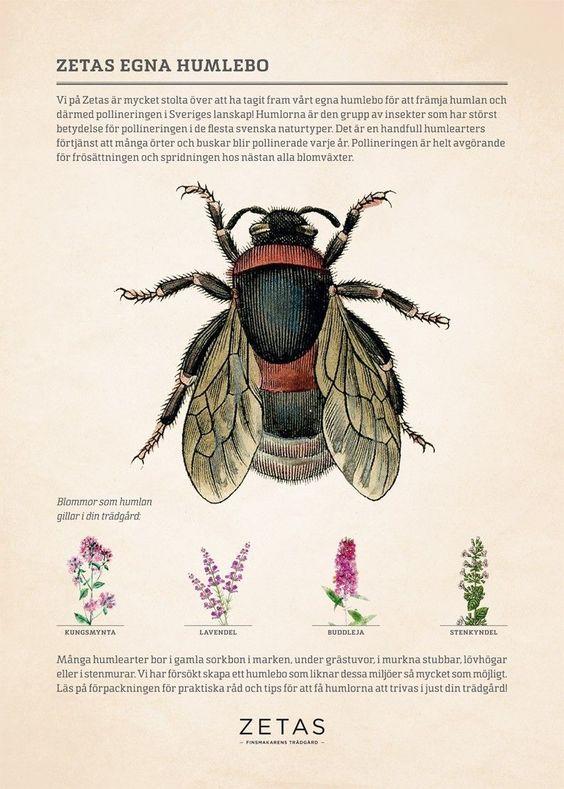 8) Ett humlebo, javisst. | A place for the bumlebee to stay, yes!!  Zeta .