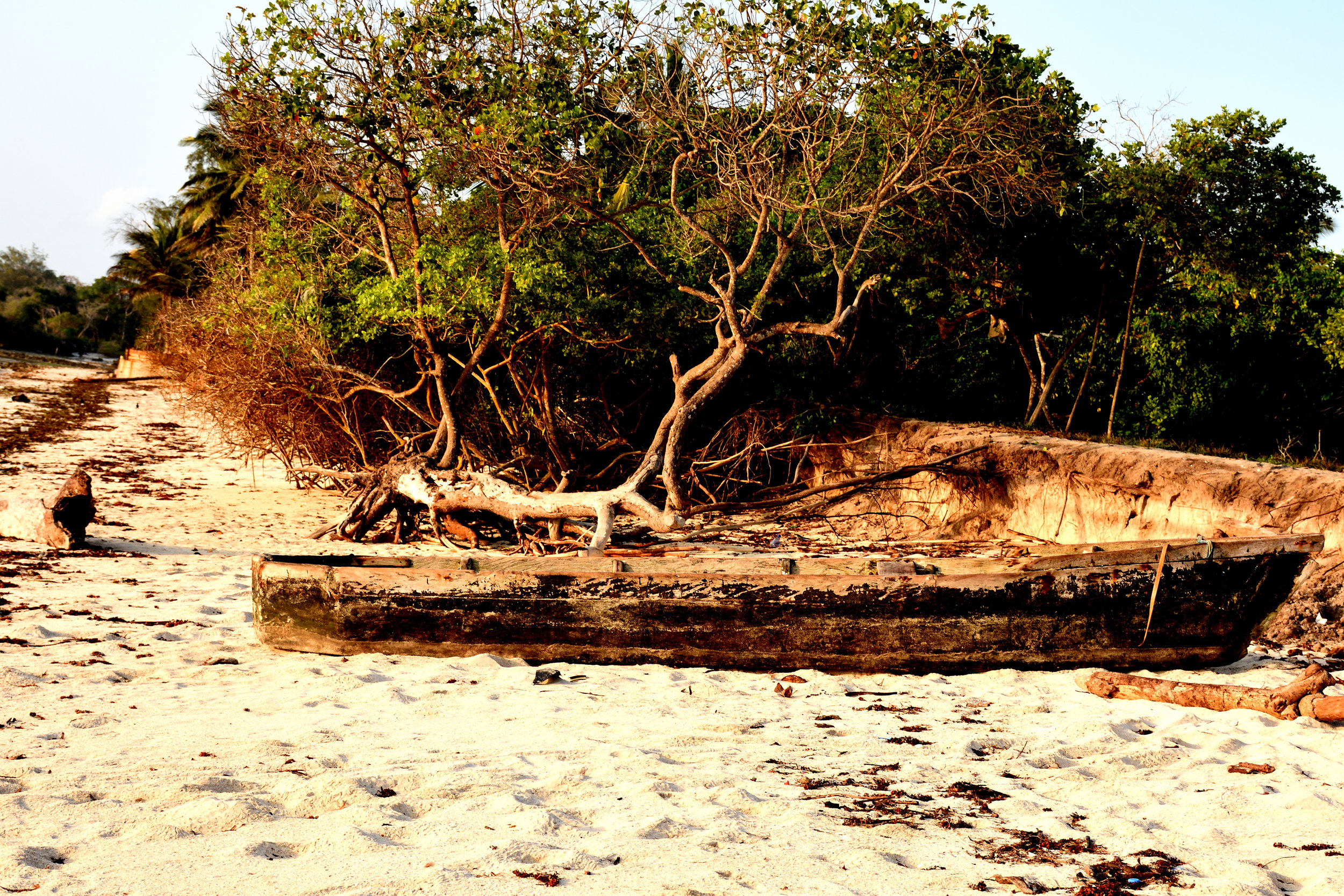Kindondo Kwetue, Diani Beach, Kenya, October 2017
