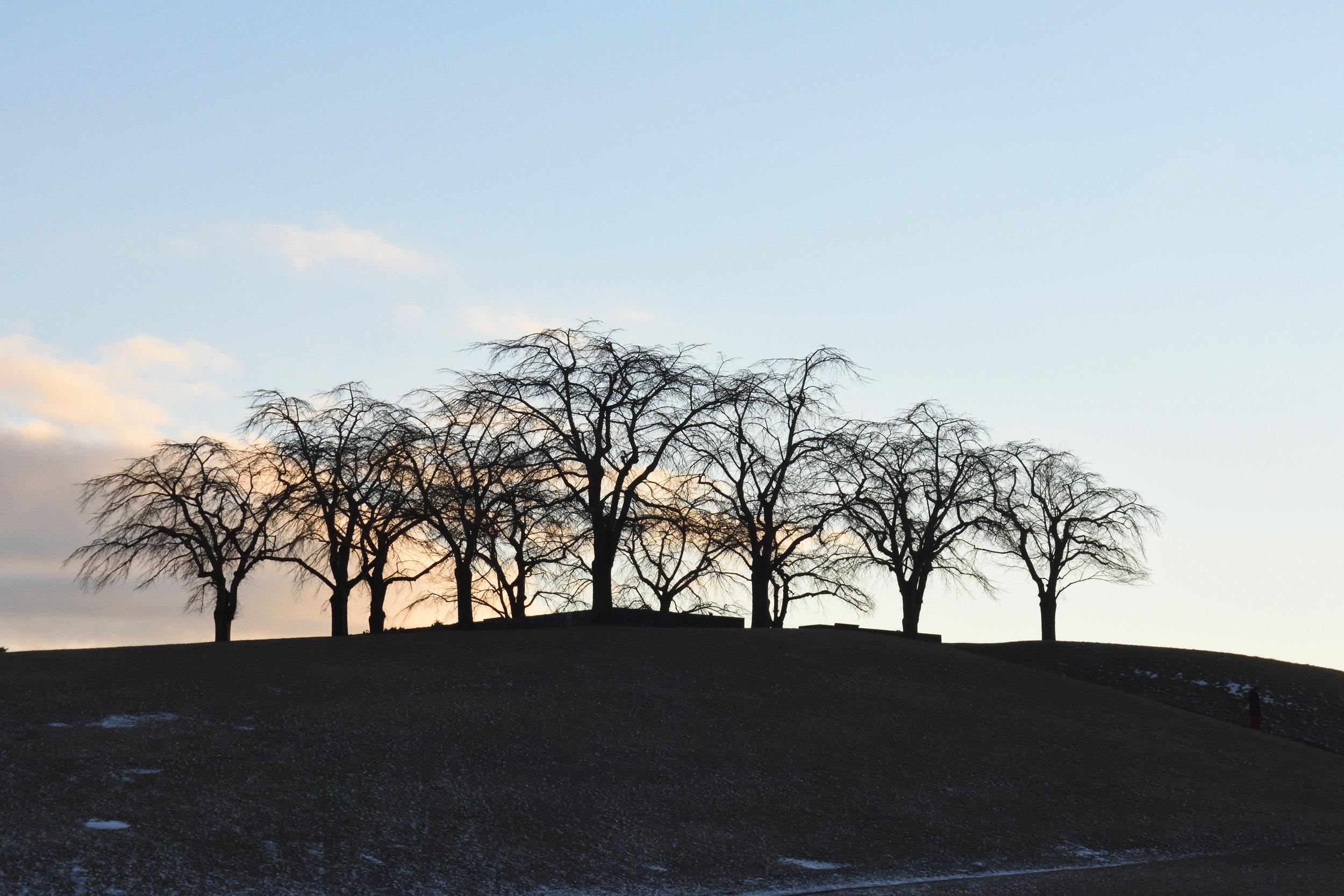 Skogskyrkogården, Stockholm, February 2017
