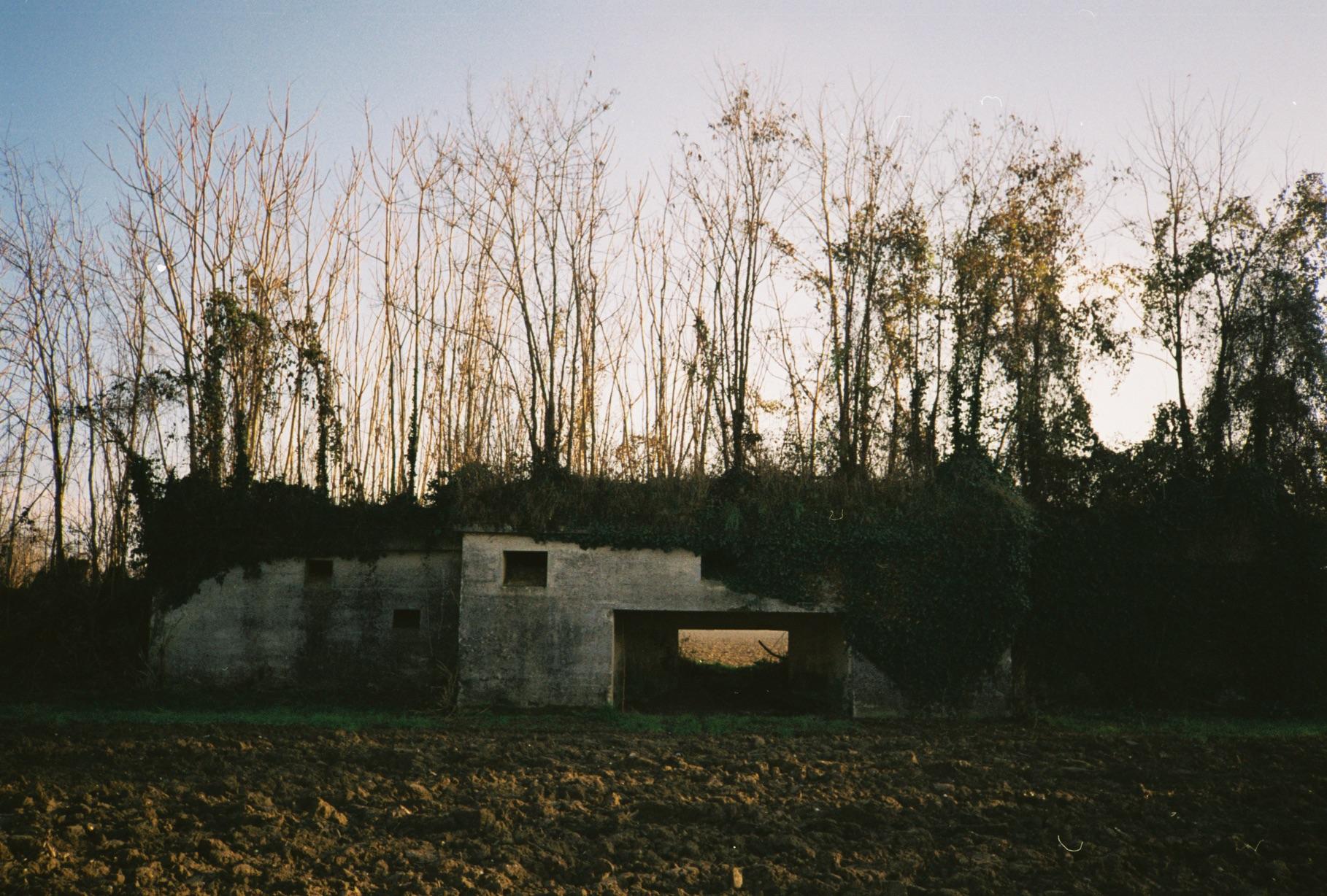 campolongo