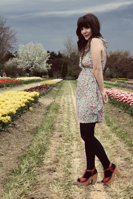 2011-spring.jpg