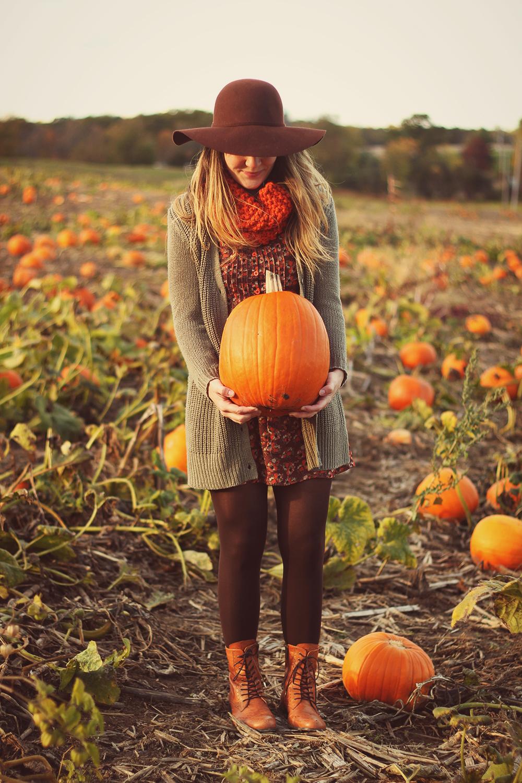 2013-autumn.jpg