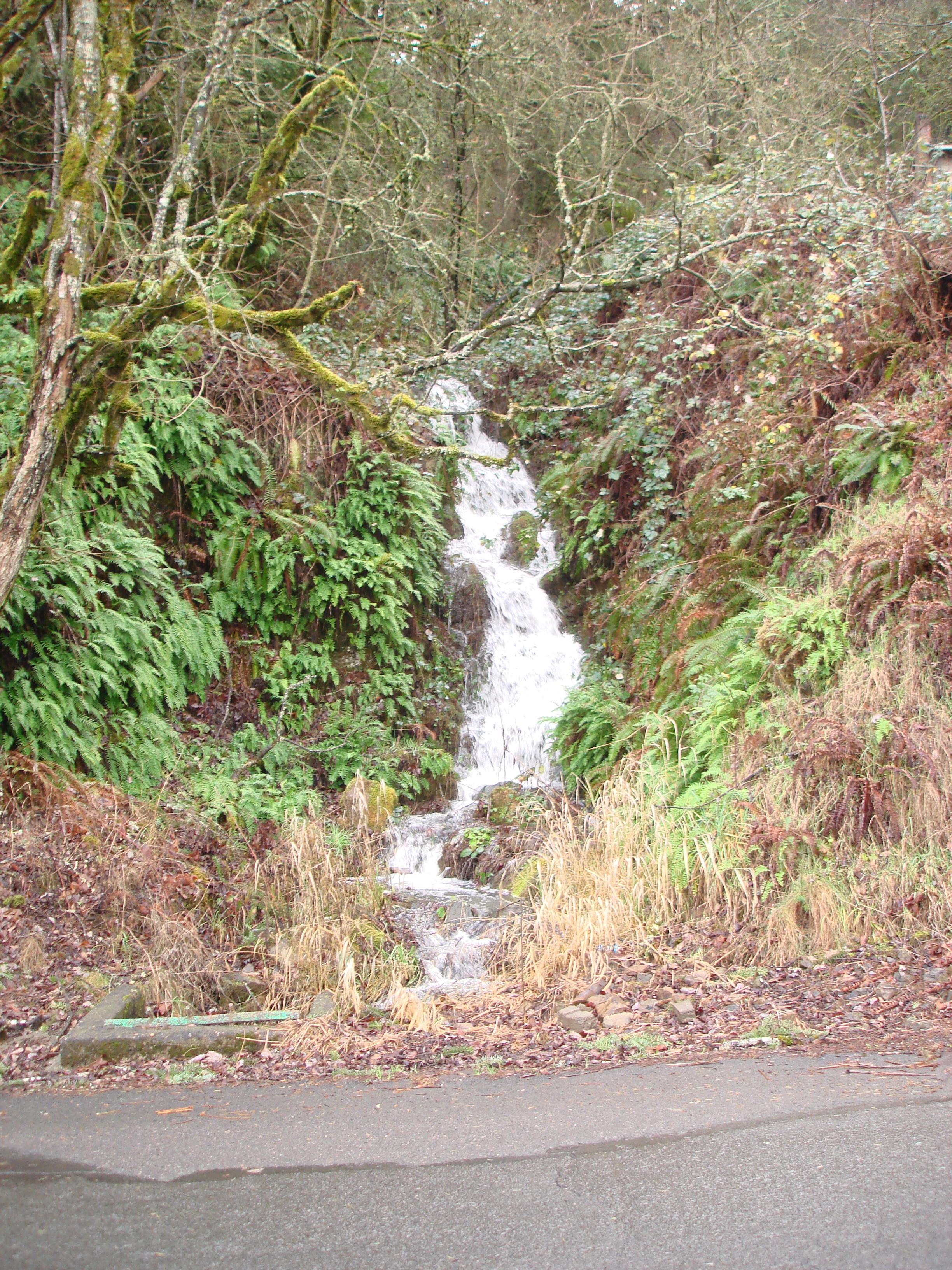 Harborton Creek