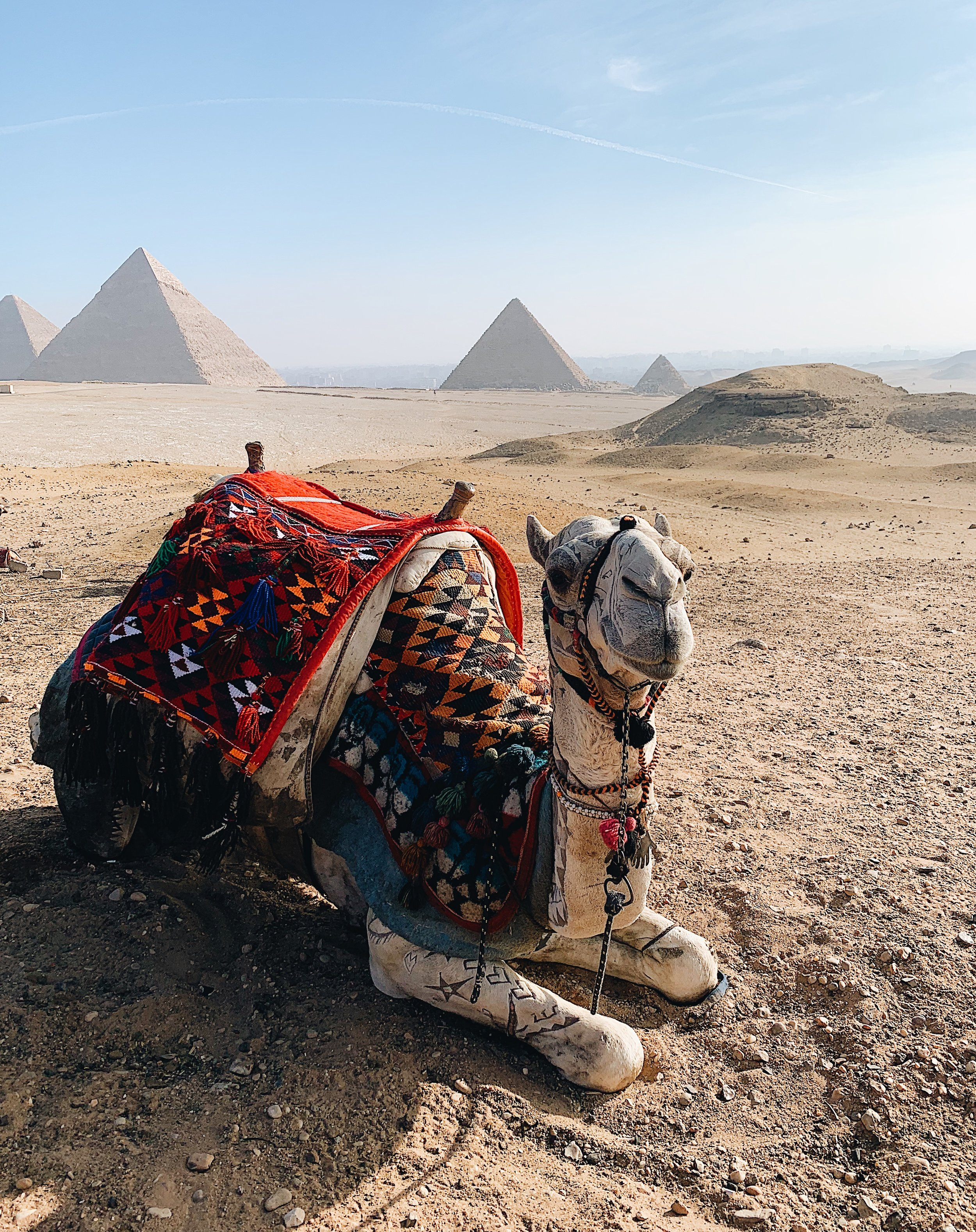 travel to egypt cairo pyramids from nyc.JPG