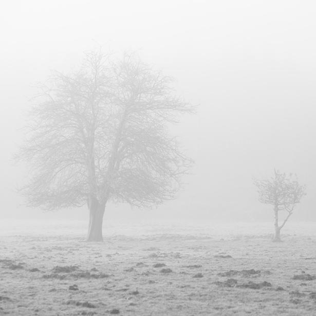 Serie_Silence_XIV-1.jpg