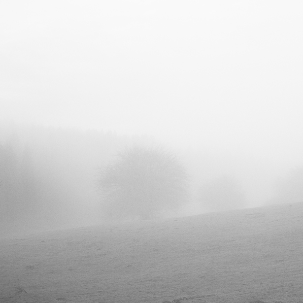 Serie_Silence_XV.jpg