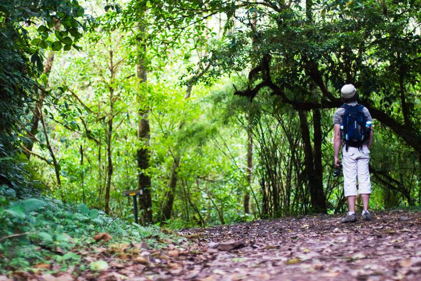 madelene-farin-costa-rica-082.jpg