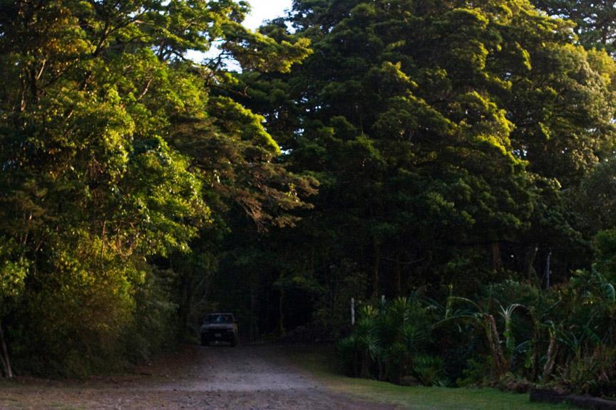 madelene-farin-costa-rica-098.jpg