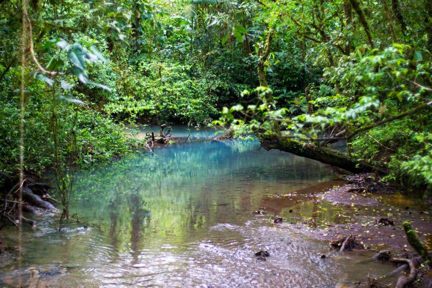 madelene-farin-costa-rica-143.jpg