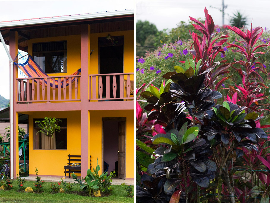 madelene-farin-costa-rica-163.jpg